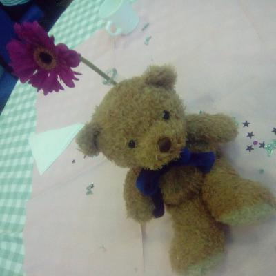 Stokesley Bear at the Party